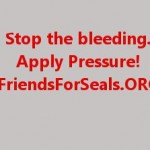 Why Boycott - Stop The Bleeding